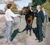 Sir Tristram meets Irish PM
