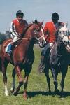 Sovereign Red. Gr. 1 Champion