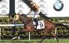 Tavago. Gr. 1 Derby Winner