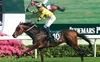 Werther. Hong Kong Gr. 1 Winner