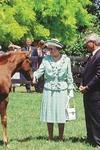 Queen Elizabeth ll at Cambridge Stud